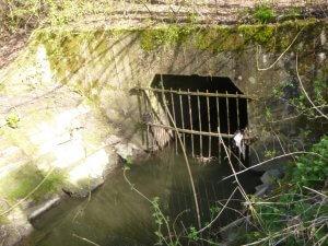 Grille sur le cours d'eau la verne de Bury