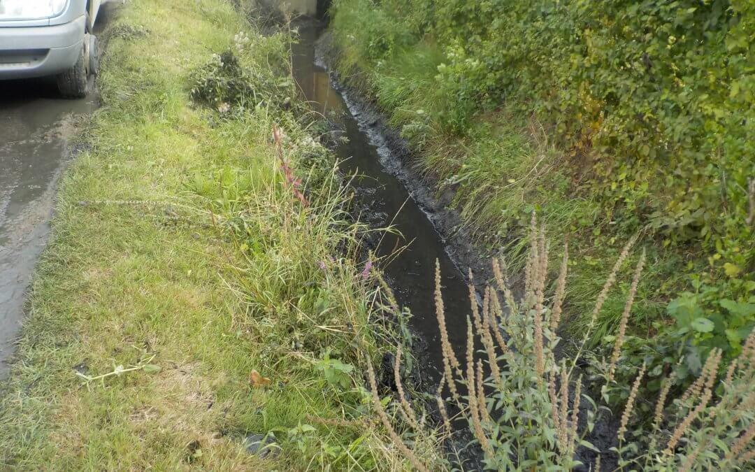 Entretien du cours d'eau le «Rieu Saint Martin» sur les communes de Saint-Sauveur, Dergneau et Renaix. A partir du premier février !