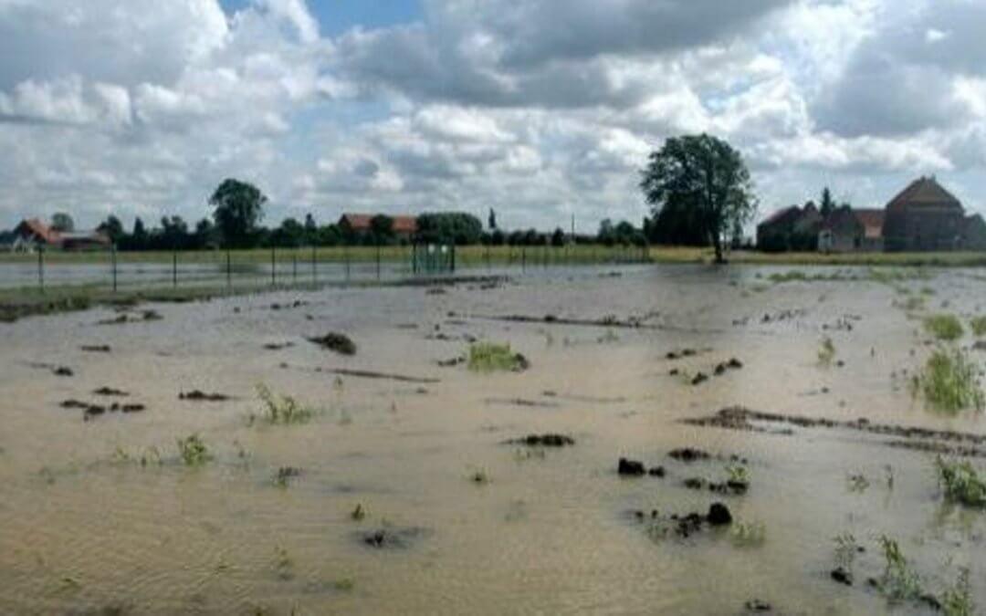 Visionnez ce petit film explicatif de lutte contre les coulées de boue à l'échelle d'un bassin versant
